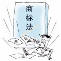 统一法律适用标准 维护商标法治环境